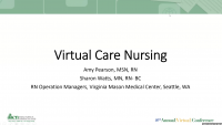 Virtual Nursing Care: Transforming Primary Care Nursing Using Process Improvement Strategies
