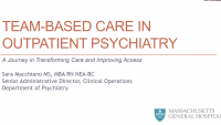 Team-Based Care in Outpatient Psychiatry: A Journey in Transforming Care and Improving Access icon