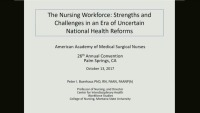 The RN Workforce - Relationship to the Medical-Surgical Nurse and Healthy Practice Environment icon