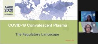 AM20-33: COVID-19 Convalescent Plasma (CCP) -- The Regulatory Landscape