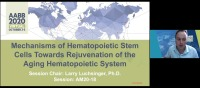 AM20-18: Mechanisms of Hematopoietic Stem Cells Towards Rejuvenation of the Aging Hematopoietic System
