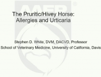 The Pruritic/Hivey Horse: Allergies and Urticaria