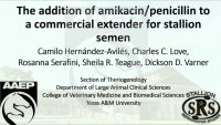 The Addition of Amikacin/Penicillin to a Commercial Extender for Stallion Semen