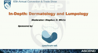 In-depth: Dermatology and Lumpology