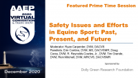 Prime Time: Safety Issues and Efforts in Equine Sport Panel