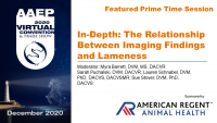 Prime Time: The Relationship Between Imaging Findings and Lameness Q&A/Panel