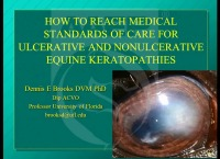 How to Reach the Medical Standards of Care for Ulcerative and Non-Ulcerative Equine Keratopathies