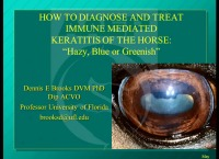 How to Diagnose and Treat Immune-Mediated Keratitis of the Horse