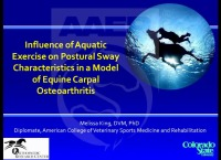 Influence of Aquatic Exercise on Postural Sway Characteristics in a Model of Equine Carpal Osteoarthritis