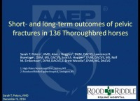 Short- and Long-Term Outcomes of Pelvic Fractures in 136 Thoroughbreds (2000-2010)