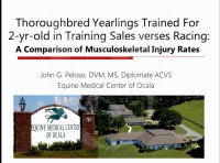 Comparison of Training-Related Injury Rates Between Juvenile Thoroughbreds Trained for Two-Year-Old Sales and Those Trained Solely for Racing