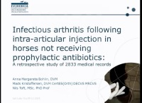 Infectious Arthritis Following Intra-Articular Injection in Horses Not Receiving Prophylactic Antibiotics: A Retrospective Cohort Study of 2833 Medical Records