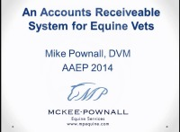 An Accounts Receivable System for Equine Veterinarians