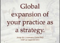 Global Expansion of Your Practice as a Strategy