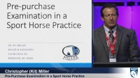 Pre-Purchase Examinations in a Sport Horse Practice