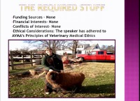 Strategies to Promote Success for Women in Equine Veterinary Medicine