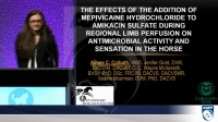 Antimicrobial Activity and Cutaneous Sensation After the Addition of Mepivicaine Hydrochloride to Amikacin Sulfate Perfusate
