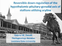 Reversible Downregulation of Hypothalamic-Pituitary-Gonadal Axis in the Stallion With a Third-Generation Gonadotropin-Releasing Hormone Antagonist