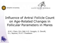 Influence of Antral Follicle Count on Age-Related Changes in Follicular Parameters in Mares
