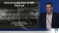 MRI Diagnosis of Foot Lameness and Therapeutic Approaches Following an Accurate MRI