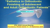 2008 NESO Annual Meeting - Esthetics in Orthodontic Finishing of Adolescent and Adult Orthodontic Patients