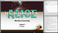 Worlds of Learning with Inanimate Alice