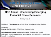 MSB Focus: Uncovering Emerging Financial Crime Schemes