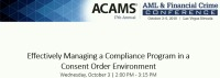 Effectively Managing a Compliance Program in a Consent Order Environment