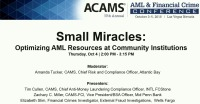 Small Miracles: Optimizing AML Resources at Community Institutions