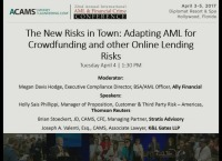 The New Risks in Town: Adapting AML for Crowdfunding and Other Online Lending Risks