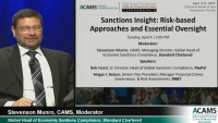 Sanctions Insight: Risk-based Approaches and Essential Oversight