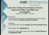 Cyber CSI: A Deep-Dive Analysis of How a Cybercrime Was Committed and Investigated