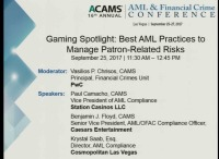 Gaming Spotlight: Best AML Practices to Manage Patron-Related Risks