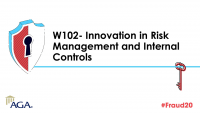 W102- Innovation in Risk Management and Internal Controls (FOS: MGMT)