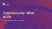 Cybersecurity: What to Do