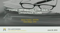 990 Issues for Small Organizations/Practices