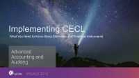 Implementing CECL: What You Need to Know About Estimates and Financial Instruments