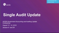 Single Audit Update (Repeated in GAE1828)