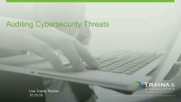 Auditing Cybersecurity Threats