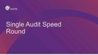Single Audit Speed Round
