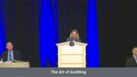 The Art of Auditing