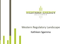 Regulatory Landscape