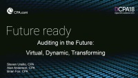 Auditing in the Future: Virtual, Dynamic, Transforming