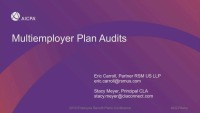 Plan, Design, and Monitor Payroll Audits