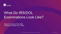 What Does an IRS/DOL Exam Look Like?