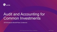 Audit and Accounting for Common Investments