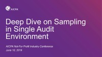 Deep Dive on Sampling in a Single Audit Environment
