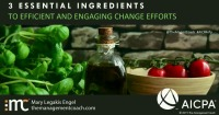 3 Essential Ingredients to Efficient and Engaging Change Efforts