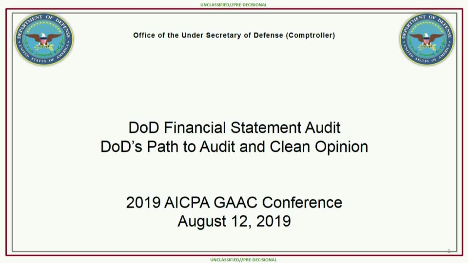 Remediating DOD's Audit Findings - A Long-Term View
