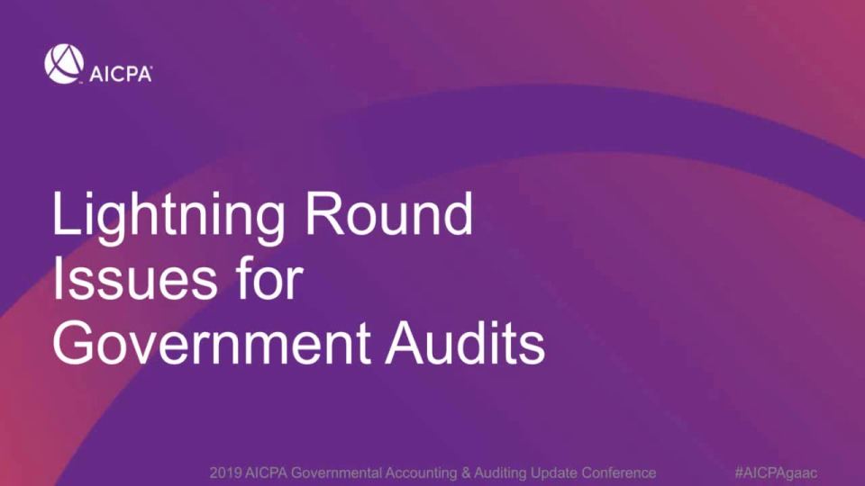 Lightning Round Issues for Government Audits